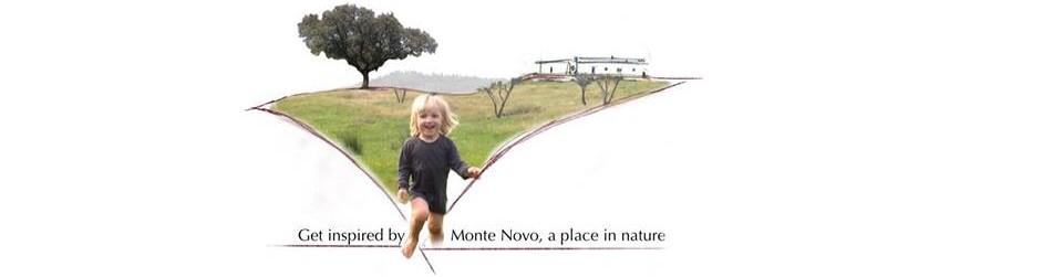Monte Novo Logo